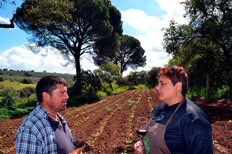 Bodegas Robles presenta «El origen» en la Cata del Vino.