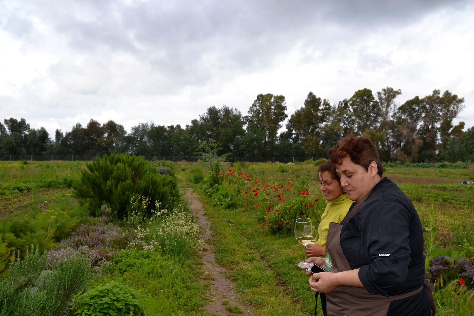 #elorigen. Guisantes con nueces, semilla de hinojo, flor de rabanilla, a la hierbabuena y lima. / Piedra Luenga Fino.