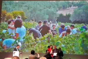 Bodegas Robles collects the wine tourism award Wine Routes of Spain.
