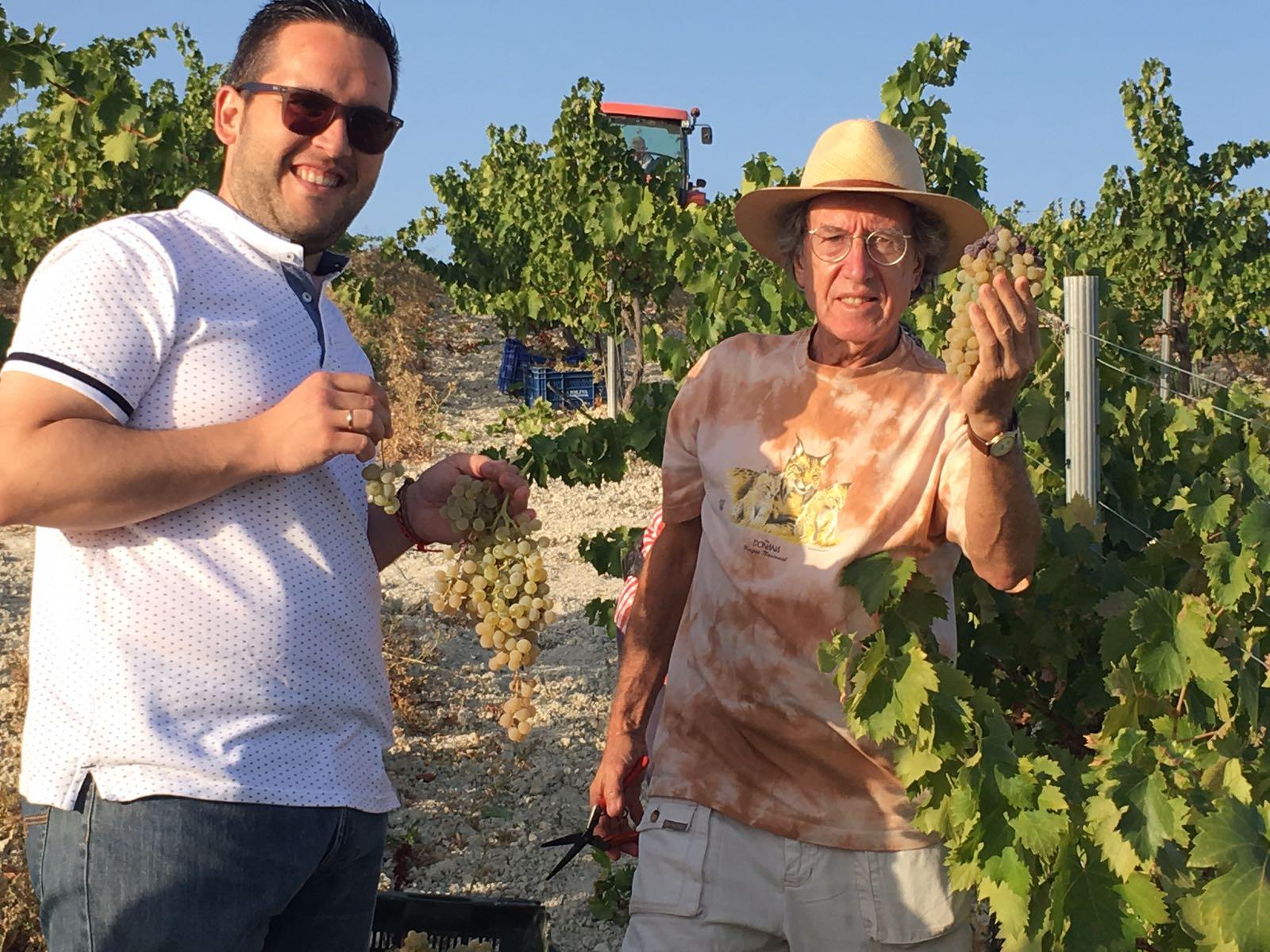 José Álvarez, alcalde de Santaella, y Ezequiel Martínez comparten una jornada de vendimia en el viñedo Villargallegos de Bodegas Robles