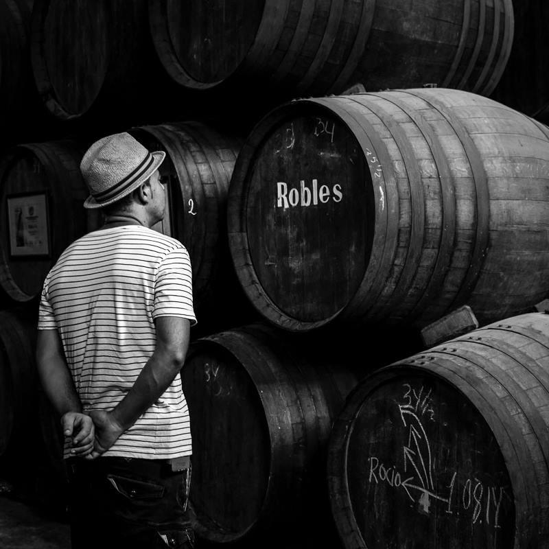 enoturismo en cordoba, visita bodega de vino
