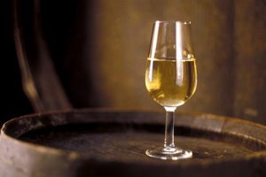 ¿Cómo se elabora un vino fino?