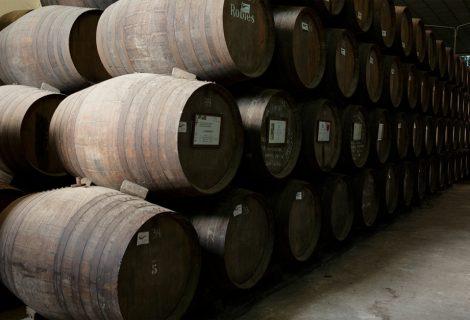 Origen del vino Palo Cortado