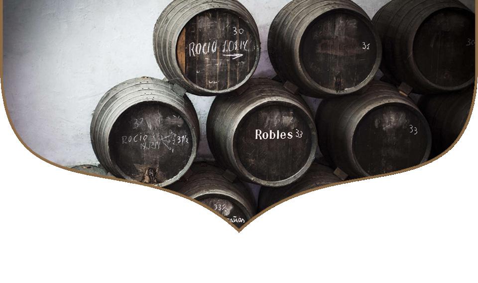 organic aged vinegar bodegas robles