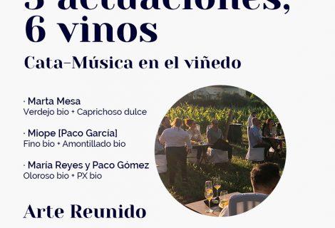 [31 julio] 3 actuaciones, 6 vinos